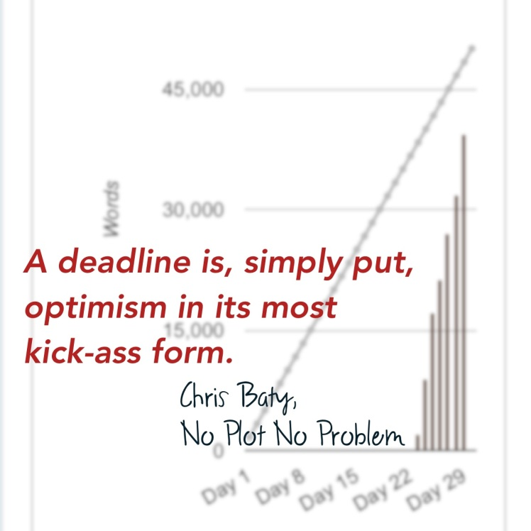 A deadline, simply put, is optimism in its most kick-ass form. -Chris Baty, No Plot? No Problem!