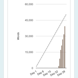 My 2014 NaNoWriMo Graph